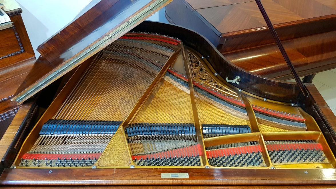 PIANO À QUEUE CRAPAUD BEULHOFF 1900